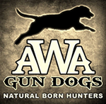 AWA Gun Dogs – Natural Born Hunters - Professional Retriever Training for the Duck and Goose Hunter
